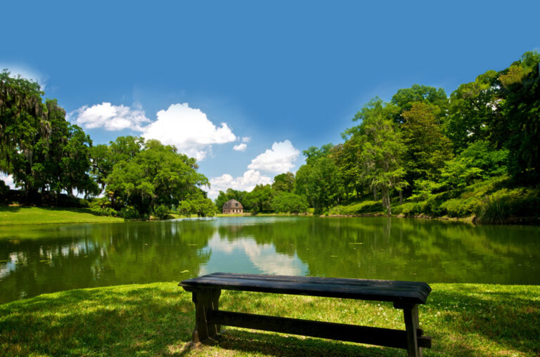 panchina vuota simbolo di solitudine, da riempire di solidarietà con gli incontri dell'associazione i girasoli
