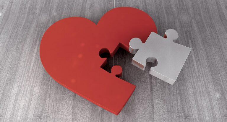 isolamento e ideali i girasoli immagine simbolica puzzle in un cuore